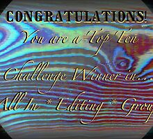 TEMP. banner for top ten challenge winners in all in editing group by linmarie