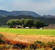 Utah Farming by Eileen McVey