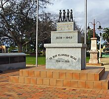 War Memorial at Forbes by Darren Stones