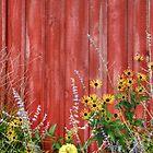 Fall Flowers by Matt Erickson