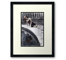 Gothic Photography Series 200 Framed Print