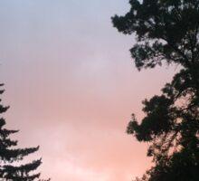 Sunset Over Trees Sticker