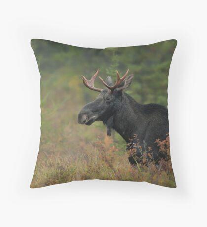 Bull Moose In Marsh Throw Pillow