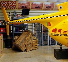 Elephant Tracking Helicopter by lroof