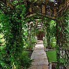 Pathway to Tranquility by Matt Erickson
