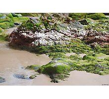 Tidal Pools Wategos Beach, Byron Bay Photographic Print