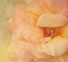 full beauty by Teresa Pople