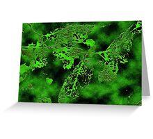 Filigree leaves green Greeting Card