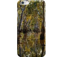 The Black Swamp - Fencing  iPhone Case/Skin