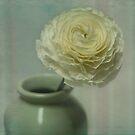 spring still life 'one' ............... by deborah brandon