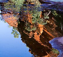 Reflections - Palm Valley by Steve Bass