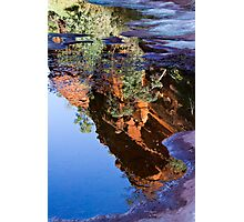 Reflections - Palm Valley Photographic Print