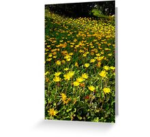 Flowers on the Hill Greeting Card