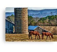 Virginia Horse Farm Canvas Print
