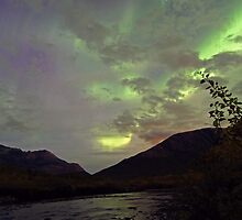 Aurora Borealis by the river by Frank Olsen