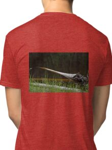 Deadwood and Pine Reflections  Tri-blend T-Shirt