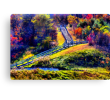 Stepping into the woods Canvas Print