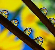 SunFlowers II by Marc Garrido Clotet