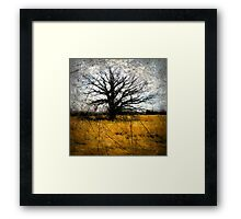 Desolate III Framed Print