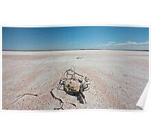 Lake Amadeus, Central Australia Poster