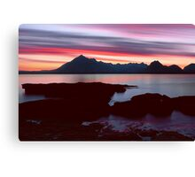 Skye's Night Sky Canvas Print