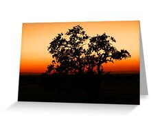 One tree at a time.... Greeting Card