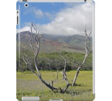 Molokai Surrealism  iPad Case/Skin