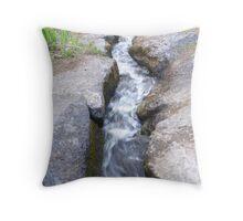 Small stream Throw Pillow