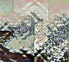 P1430973-P1430975 _P1430981 _P1430983 _GIMP by Juan Antonio Zamarripa