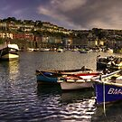 Boats at Brixham by Rob Hawkins