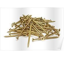 Screws on white background. Poster