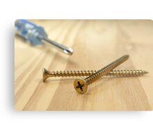 Screws and screwdriver. Metal Print