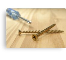 Screws and screwdriver. Canvas Print
