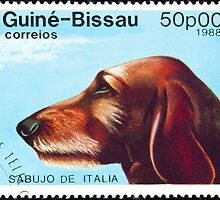 Sabujo dog stamp. by FER737NG
