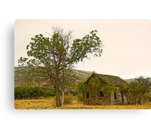 Abandoned 2 Canvas Print
