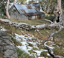 Wallace Hut, Falls Creek, Victoria, Australia by Michael Boniwell