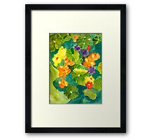 Nasturtiums I Have Known and Loved Framed Print