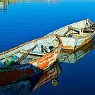 Peggy&#x27;s Cove Row Boats by kenmo