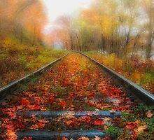 Fall Rhapsody by Bill Maynard