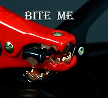 Bite Me by Toni Kent