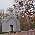 Primitive Church by Michael L. Colwell