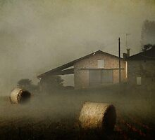 Out of the mist ! by Irene  Burdell