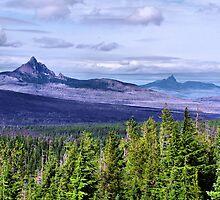 Mt Washington and Three Finger Jack by Don Siebel