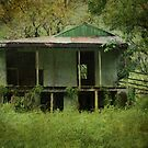 """""""Abandoned"""" by Sue  Fellows"""