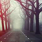 Haunted by EliseEnchanted