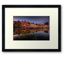 Fine Point Framed Print