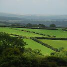 In England's Green & Pleasant Land by Groenendevil