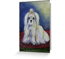 Maltese on a pillow Greeting Card