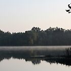 Misty Reflections - Alabama River by KimberlyBlack