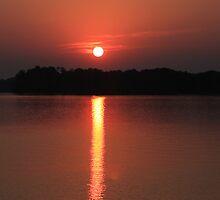Sunrise Over the Alabama River by Kimberly  Saulsberry